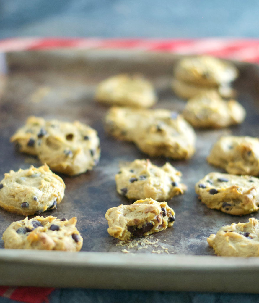 Gluten Free Pumpkin Chocolate Chip Cookies Recipe