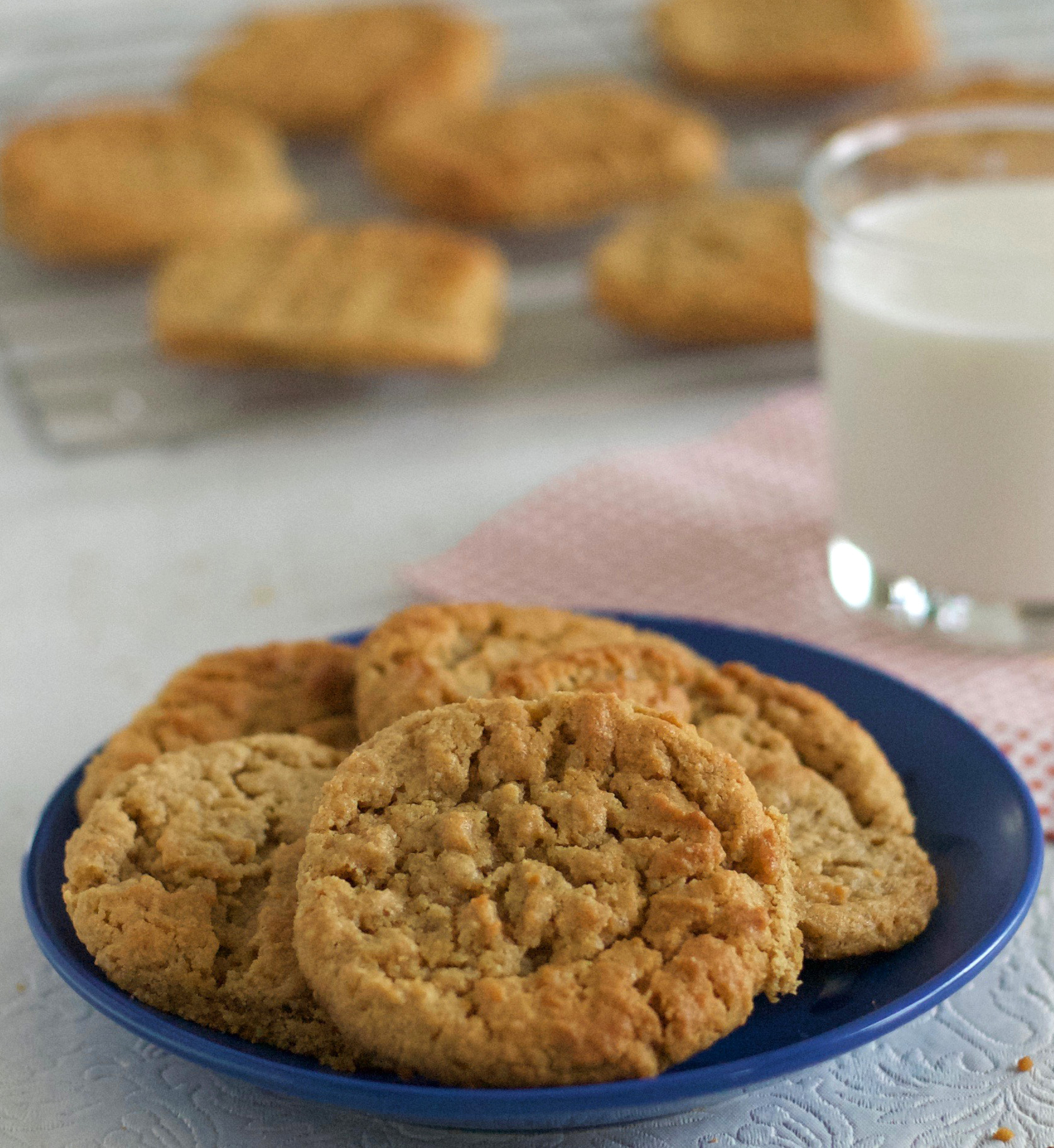 Gluten Free Peanut Butter Cookies Recipe